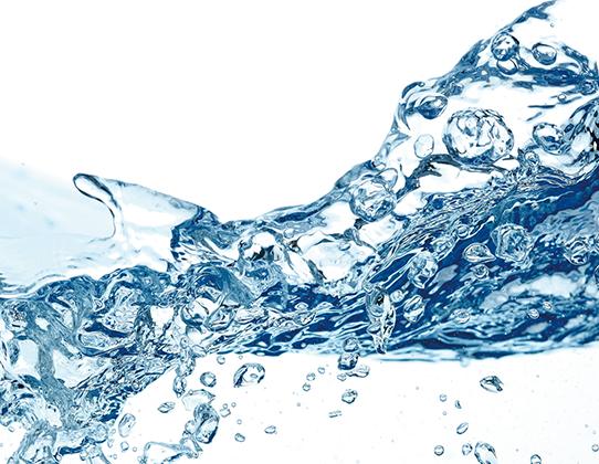 コメセラミド水